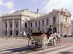 Вена: город-музей